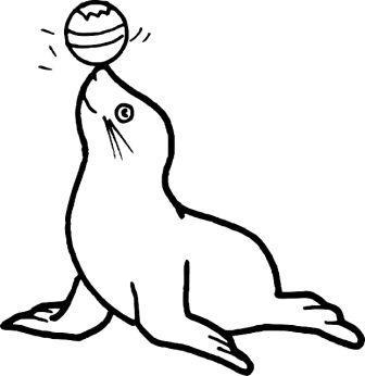 Dibujos de focas  FOCAPEDIA